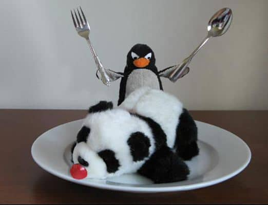actualizacion pinguino google