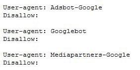 robots text google