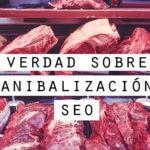la verdad sobre la canibalizacion seo